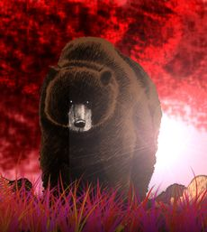 Great brown bear cOLORED.jpg